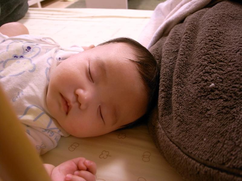 おやすみ葵音